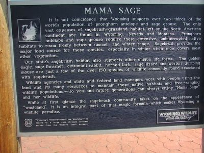 Mama Sage Marker image. Click for full size.