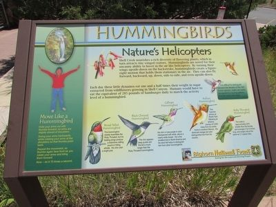 Hummingbirds Marker image. Click for full size.