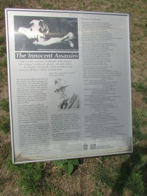 The Innocent Assassins Marker image. Click for full size.
