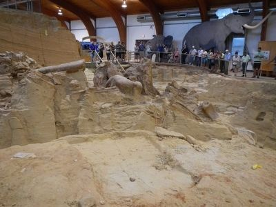 Mammoth Excavation Site image. Click for full size.