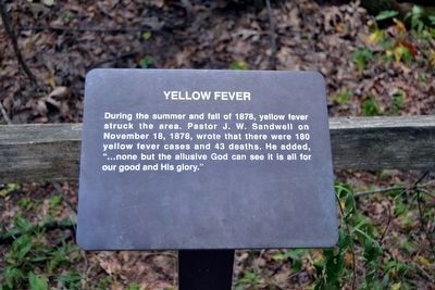 Yellow Fever Interpretive Sign image. Click for full size.