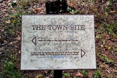 The Town Site Interpretive Sign image. Click for full size.