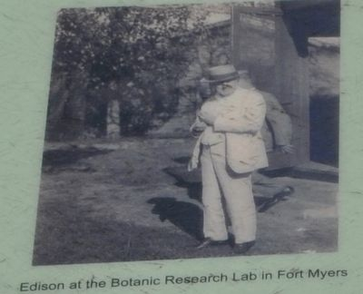 Edison at the Botanic Research Lab in Fort Myers image. Click for full size.