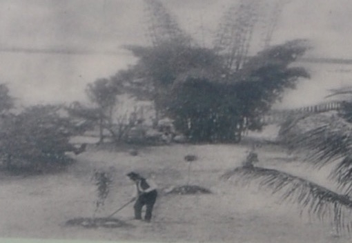 Edison's father, Samuel, planting a tree on the property in 1891.