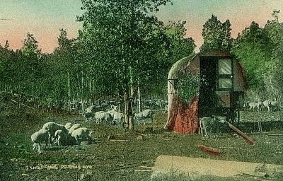 Sheep Camp image. Click for full size.
