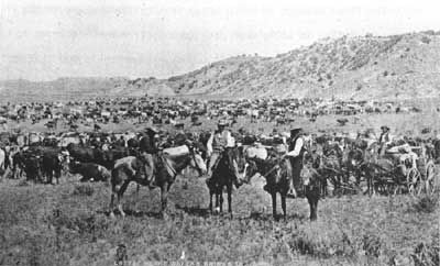 Ranching in Wyoming image. Click for full size.