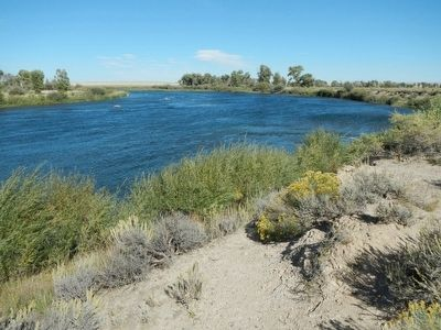 The Green River at Seedskadee National Wildlife Refuge image. Click for full size.