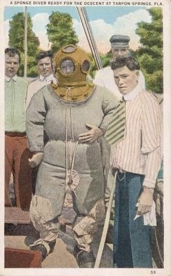 <i>A Sponge Diver Ready for the Descent, Tarpon Springs, Fla.</i> image. Click for full size.