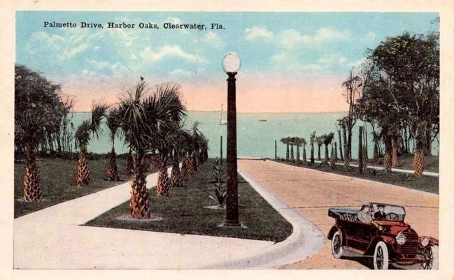 <i>Palmetto Drive, Harbor Oaks, Clearwater, Fla.</i> image. Click for full size.