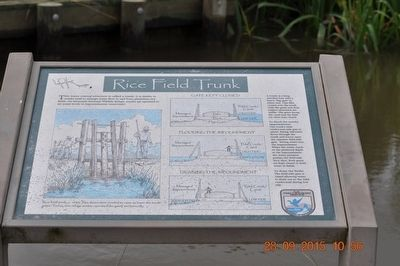 Rice Field Trunk Marker image. Click for full size.