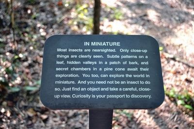 In Miniature Interpretive Sign image. Click for full size.