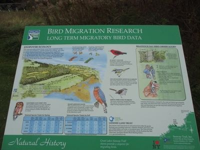 Bird Migration Research Marker image. Click for full size.