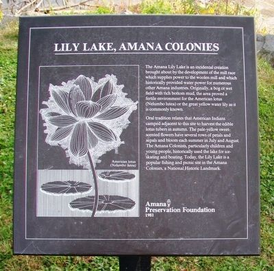 Lily Lake, Amana Colonies Marker image. Click for full size.