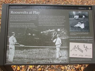 Roosevelts at Play Marker image. Click for full size.