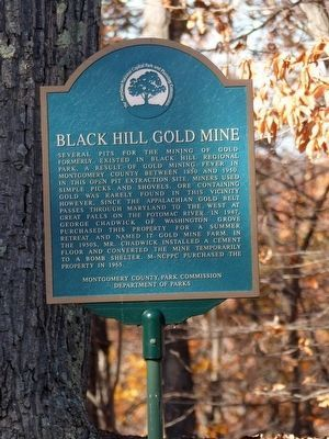 Black Hill Gold Mine image. Click for full size.