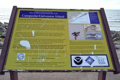 Campeche / Galveston Island Marker image. Click for full size.