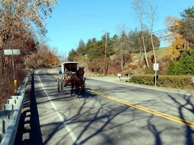 Amish buggy on the road by Tea Creek image. Click for full size.