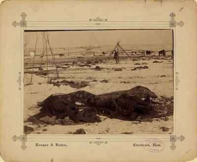 <i>Big Foot&#39;s camp three weeks after the Wounded Knee Massacre </i> image. Click for full size.