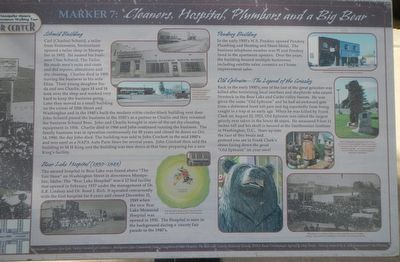 Cleaners, Hospital, Plumbers and a Big Bear Marker image. Click for full size.