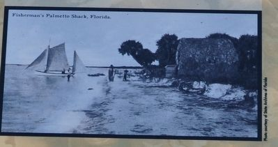 Fisherman's Palmetto Shack, Florida image. Click for full size.