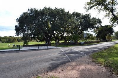 Johnson Family Cemetery<br>as viewed from Park Road 49 image. Click for full size.