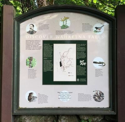Discover Wahkeena Falls Marker image. Click for full size.