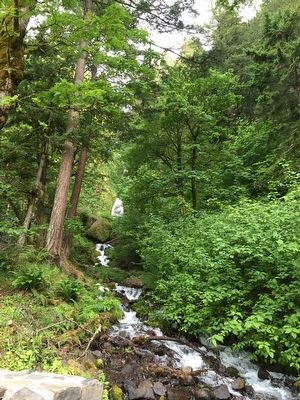 Wahkeena Falls image. Click for full size.
