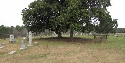 Elkins Cemetery image. Click for full size.