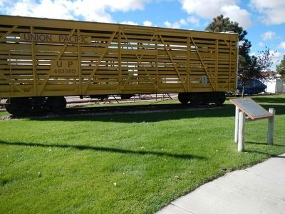 Union Pacific Railroad (UP) Double Deck Stock Car and Marker image. Click for full size.