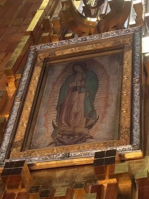 The Image of the Virgin of Guadalupe image. Click for full size.