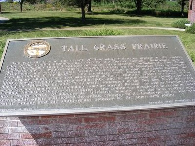 Tall Grass Prairie Marker image. Click for full size.