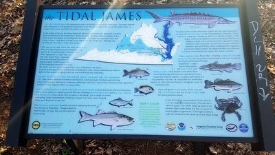 The Tidal James Marker image. Click for full size.