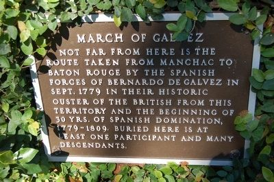 March Of Galvez Marker image. Click for full size.