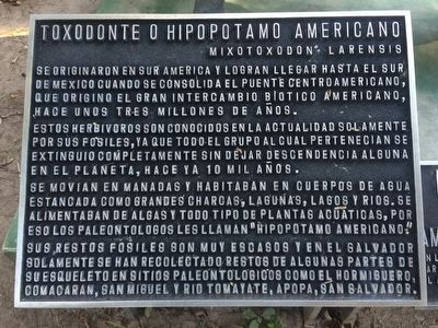 The American Hippopotamus Marker image. Click for full size.