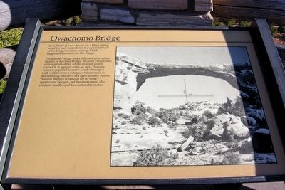 Owachomo Bridge Marker image. Click for full size.