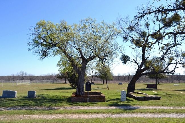 The Common Grave in Proffitt Cemetery image. Click for full size.