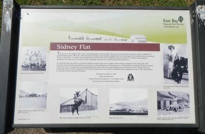 Sidney Flat Marker image. Click for full size.
