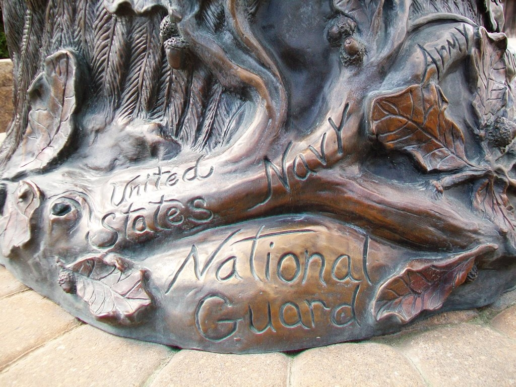 """Branches Of Honor"" Veterans Memorial Detail"