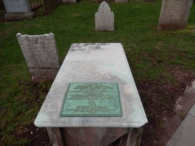 Brigadier General Anthony Walton White grave marker-distant shot image. Click for full size.