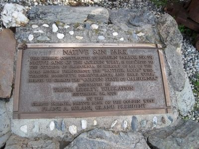 Native Son Park Marker image. Click for full size.
