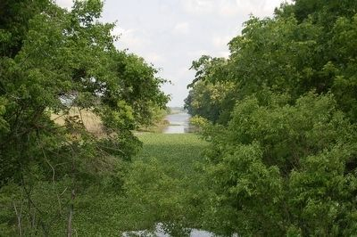 Bayou Fordoche image. Click for full size.