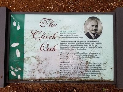 The Clark Oak Marker image. Click for full size.
