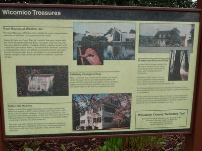 Wicomico Treasures Marker image. Click for full size.