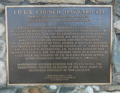 I.D.E.S. Council Hayward #14 Marker image. Click for full size.