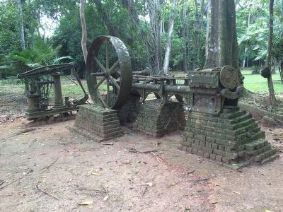 Tredegar steam powered water pump in Belize image. Click for full size.