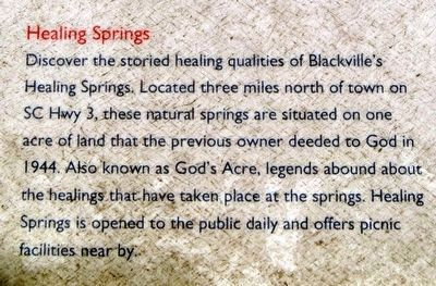Blackville Marker<br>Healing Springs image. Click for full size.