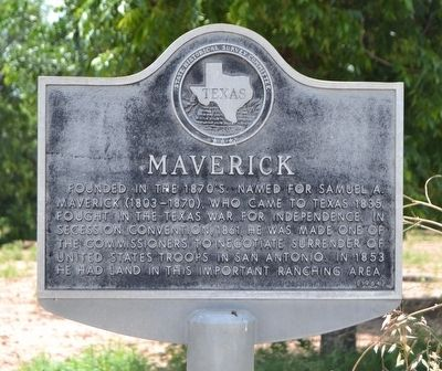 Maverick Marker image. Click for full size.