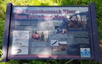 The Rappahannock River Runs Free Once More Marker image. Click for full size.
