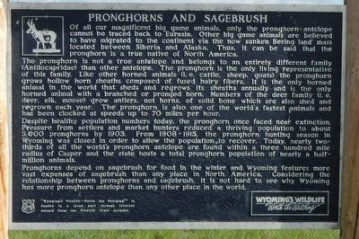 Pronghorns and Sagebrush Marker image. Click for full size.
