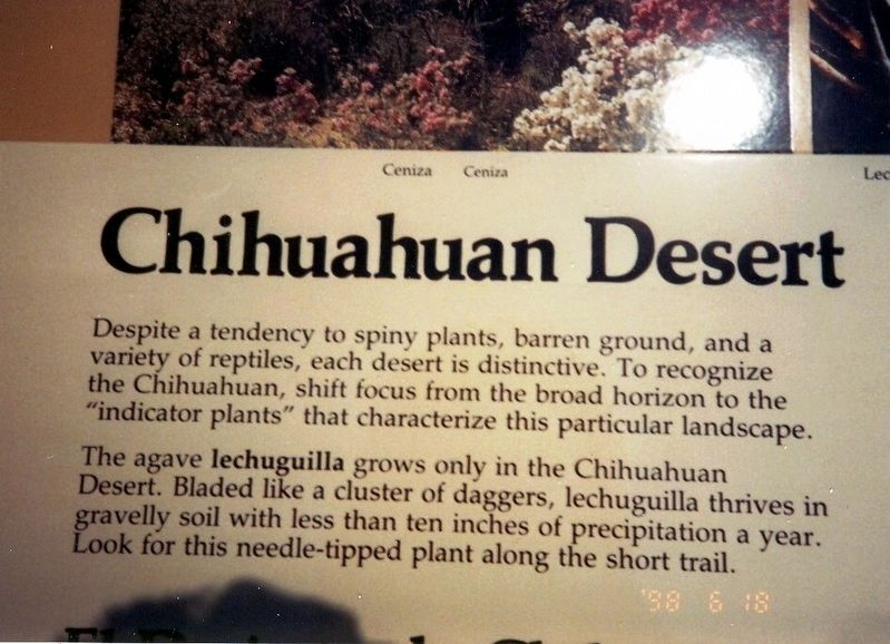 Chihuahuan Desert Marker image. Click for full size.